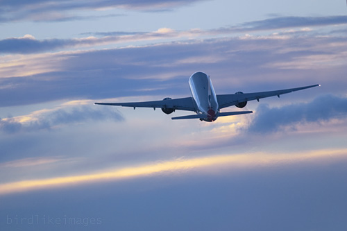 Дешевые билеты на самолеты в крым билет на самолет кемерово москва цена